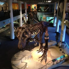 Photo taken at The Academy of Natural Sciences of Drexel University by Jake G. on 12/4/2012