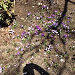 Photo taken at Crocker Park by Marsh S. on 4/10/2014