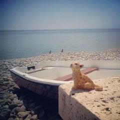 Photo taken at Trebisacce Beach by Ilya G. on 7/26/2013