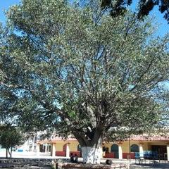 Photo taken at Ayoquezco de Aldama by Noel O. on 12/18/2012