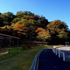 Photo taken at 富岡総合公園 by Ken. on 11/16/2014