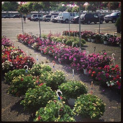 Photo taken at Berlin Farmer's Market & Shopping Center by Tania M. on 6/9/2013
