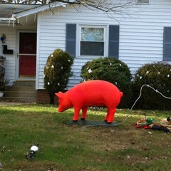 Photo taken at The Seasonal Holiday Pig by Walter V. on 11/26/2012