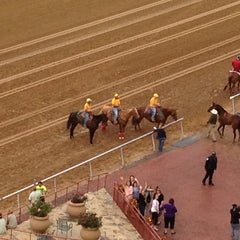 Photo taken at Lone Star Park by Michelle L. on 4/26/2013