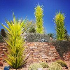 Photo taken at Desert Botanical Garden by Kira D. on 5/15/2013