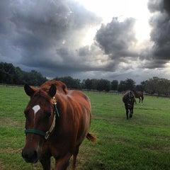 Photo taken at Brooksville, FL by Angel L. on 9/7/2013