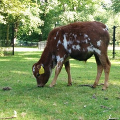 Photo taken at Kinderboerderij De Houthoeve by Wouter B. on 8/3/2014