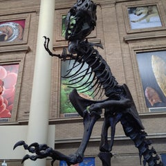 Photo taken at Denver Museum of Nature and Science by Topher A. on 1/4/2013