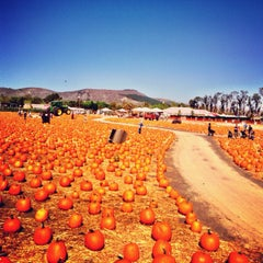 Photo taken at Underwood Family Farms by Ibrahim O. on 10/6/2013