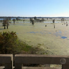 Photo taken at Henderson Swamp by Tracy L. on 11/18/2012