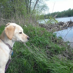 Photo taken at George Wyth State Park by Marcy S. on 5/14/2013
