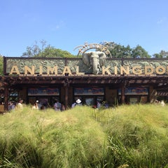 Photo taken at Disney's Animal Kingdom by Alessandro S. on 5/9/2013