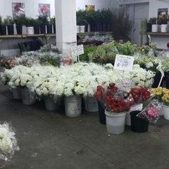 Photo taken at Berkeley Florist Supply by Brett V. on 4/1/2016