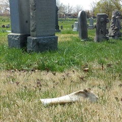 Photo taken at Lutheran-All Faiths Cemetery by Joseph F. on 4/26/2014
