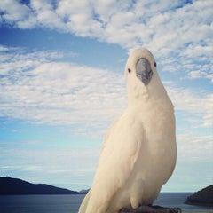 Photo taken at Hamilton Island by Matt G. on 5/27/2013