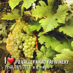 Photo taken at PB Valley Khao Yai Winery by Prayut P. on 1/30/2013