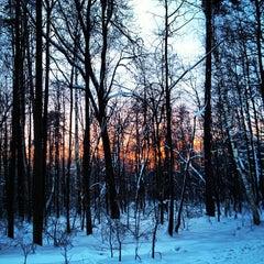 Photo taken at ПКиО «Измайловский» by Ira B. on 2/2/2013