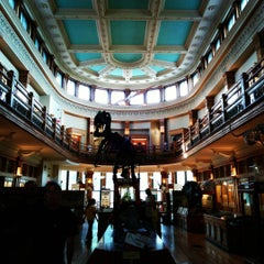 Photo taken at Musée Redpath Museum by Andre P. on 8/5/2015