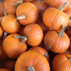 Photo taken at Tom's Farm Market & Greenhouses by Brian W. on 10/25/2012