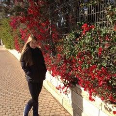 Photo taken at Be'er Sheva - באר שבע by Elena P. on 1/11/2013