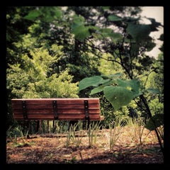 Photo taken at Suwanee Creek Park by Mary F. on 5/20/2013