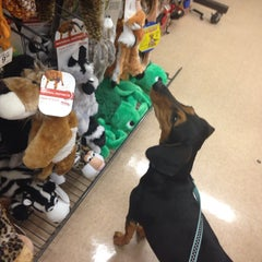 Photo taken at Petco by Angelique B. on 5/26/2014