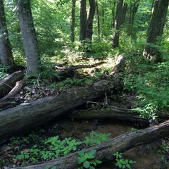 Photo taken at Cherokee Park by Stephany L. on 5/26/2014