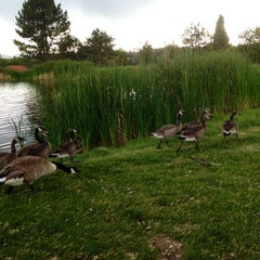 Photo taken at Overland Park Golf Course by Laura D. on 6/11/2014