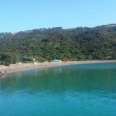 Photo taken at Waiheke Island by Raul T. on 1/14/2015