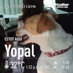 Photo taken at Yopal by Toño C. on 12/21/2014