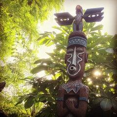 Photo taken at Enchanted Tiki Room by Jonathan C. on 6/12/2013