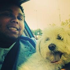 Photo taken at Abadie Veterinary Hospital by Glenn G. on 8/14/2014