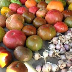 Photo taken at Davis Square Farmers' Market by Karolina S. on 9/10/2014
