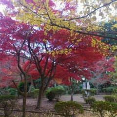 Photo taken at 源氏山公園 by Melissa K. on 11/28/2012
