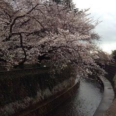 Photo taken at 哲学堂公園 by teriyaki on 3/30/2014