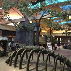 Photo taken at University Mall Tree House by Corey A. on 5/7/2015