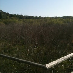 Photo taken at Spanish Pond at the Timucuan Preserve by Radesh S. on 3/29/2013