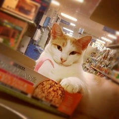 Photo taken at PetSmart by Gloria W. on 10/14/2012