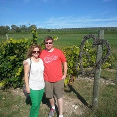 Photo taken at Silver Leaf Vineyard and Winery by Nate B. on 9/30/2013