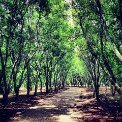 Photo taken at Johannesburg Botanical Gardens by Kate on 12/15/2012