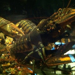 Photo taken at Red Lobster by Jacquelyn on 5/16/2013