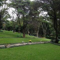 Photo taken at Cemitério da Paz by Elaine on 11/1/2013