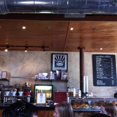 Photo taken at Catalina Coffee by Donald P. on 3/24/2011