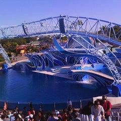 Photo taken at Dolphin Stadium by Vanessa D. on 11/26/2011