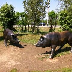 Photo taken at Велком by Sasha Z. on 5/20/2012