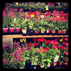 Photo taken at The Home Depot by Betty K. on 4/13/2013