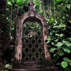 Photo taken at Jardin Edward James Xilitla by Marco on 12/19/2012