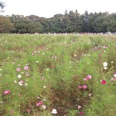 Photo taken at 小金井公園健康広場 by Susumu S. on 10/8/2012