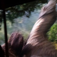 Das Foto wurde bei King Kong 360 3-D von Alejandro H. am 4/17/2014 aufgenommen
