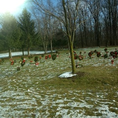 Photo taken at Indiantown Gap National Cemetery by Holly F. on 12/25/2012